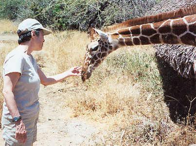 Nikki Harmon and Sara the giraffe