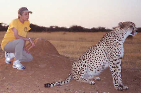 In a bold move, Nikki gives the cheetah a head start.